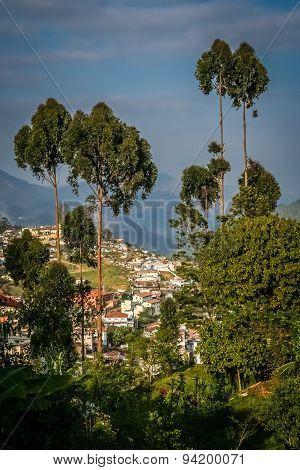 View of Kodaikanal