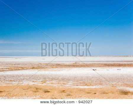 Seco Salt Lake