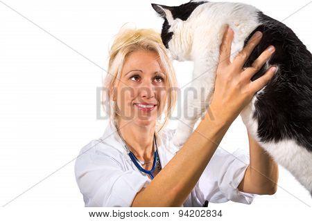 Smiling veterinarian