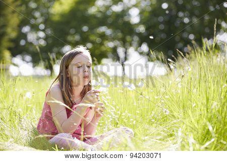 Girl Sitting In Summer Field Blowing Dandelion Plant