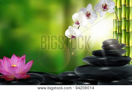 Stone, flower and bamboo background