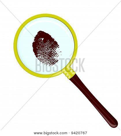 Fingerprints in magnifier