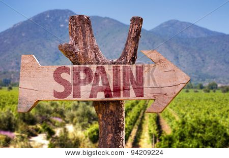 Spain wooden sign with vineyard background