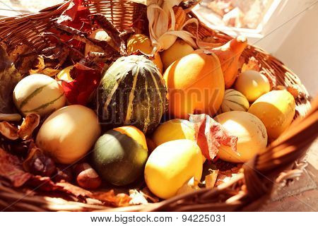 Squash And Pumpkins In A Basket