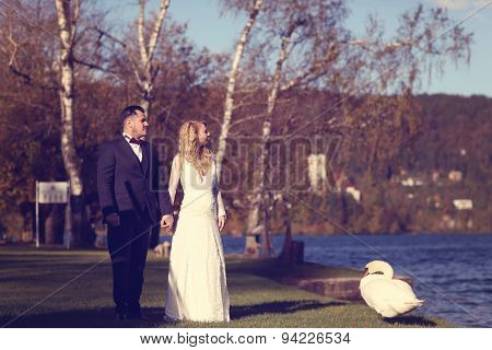 Bride And Groom Near Lake With Swan