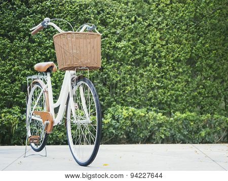 Bicycle With Green Garden Background
