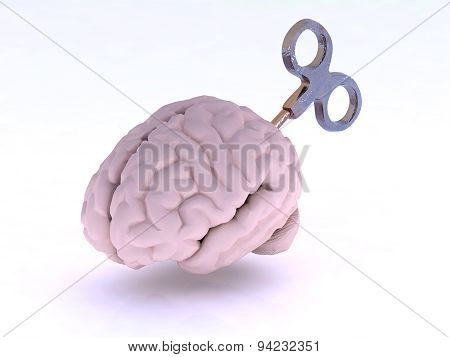 Human Brain With Key