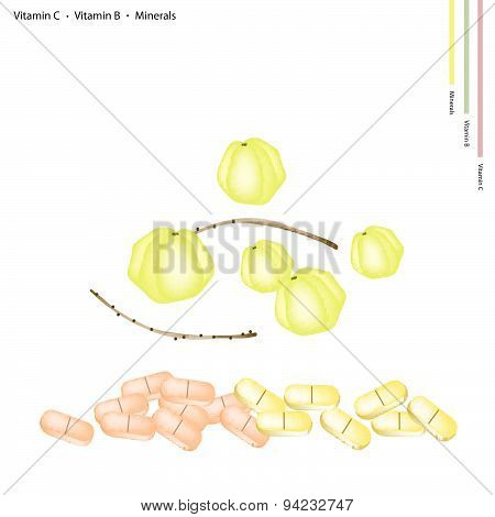 Star Gooseberries With Vitamin C, B And Minerals
