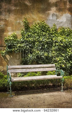 Wooden bench in front of a weathered wall with ivy
