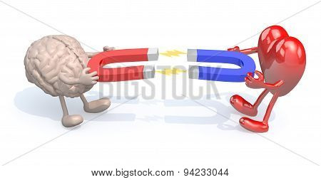 Human Brain And Heart With Arms, Legs And Magnet On Hands