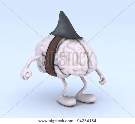 Human Brain Shark Fin