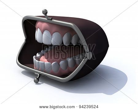 purse with open mouth