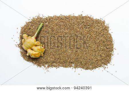 Ginger Spices And Herb On Background.