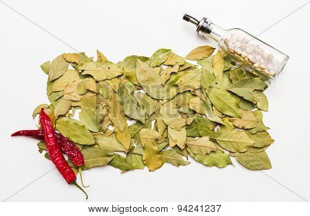 Bay Leaves Spices And Herb On White Background.