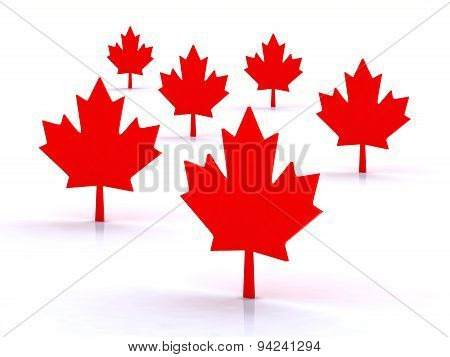 3D Maple Leafs