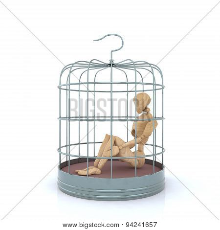 Puppet Inside The Birdcage