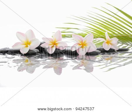 Spa set with zen stones and Frangipani and palm leaf