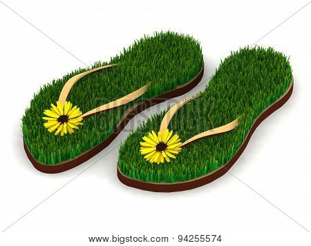 Two Sandals With Green Grass And Yellow Flowers
