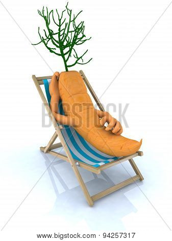 Carrot Resting On A Beach Chair