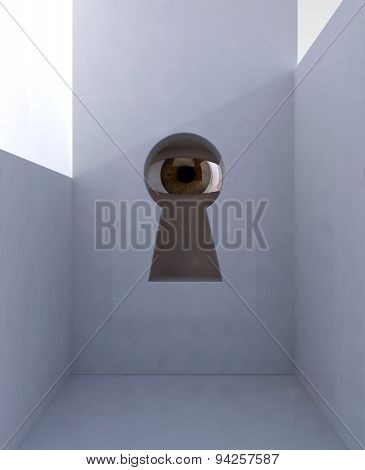 Eye In Keyhole Into Room