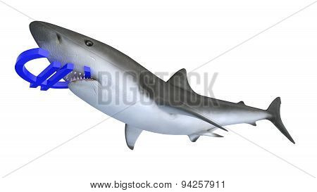 Shark Biting A Euro Currency Sign