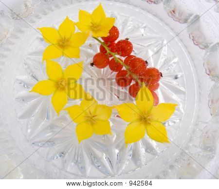 Flowers And Berries  In Water