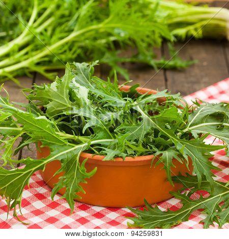 Green rucola salad