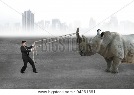 Businessman Pulling Rope Against Rhinoceros On Concrete Floor
