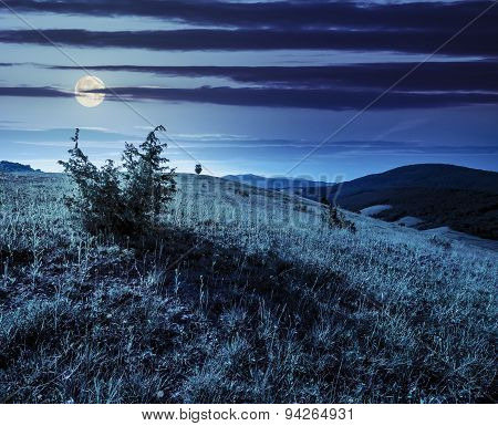 Agricultural Field In Mountains At Night