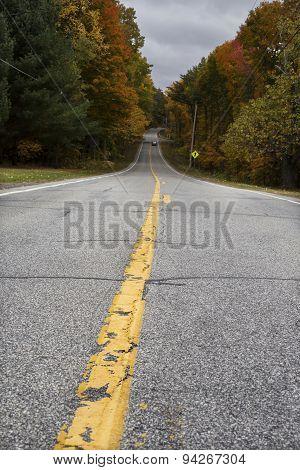 Asphalt road in Autumn