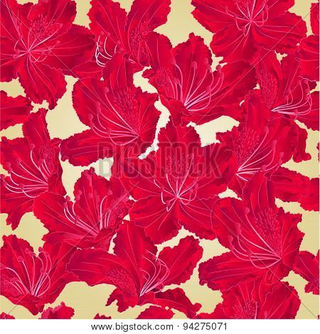 Seamless Texture Red Rhododendron  Vector