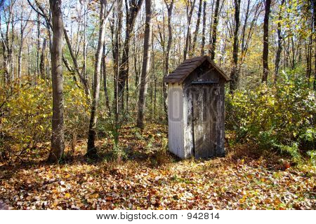 Outhouse In Autumn