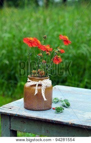 Orange flower in a vase