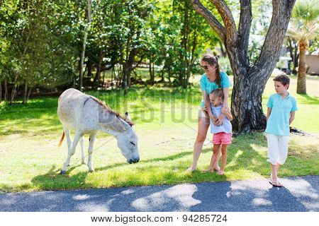 Family of mother and kids outdoors looking at wild donkeys on beautiful summer day