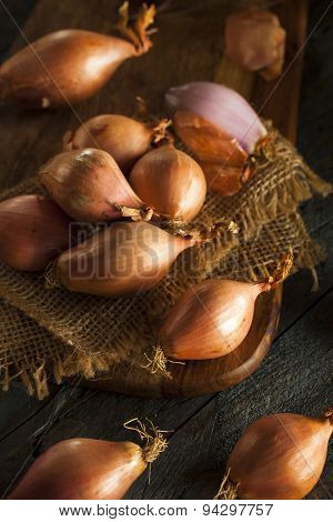 Raw Organic Spicy Shallots