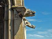 stock photo of gargoyles  - Gargoyles keeping watch on the Ulm Cathedral - JPG