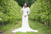 foto of orchard  - Woman in a white dress in the orchard - JPG