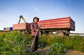 stock photo of combine  - Senior peasant with hayfork standing on the field in front of combine harvesting corn - JPG