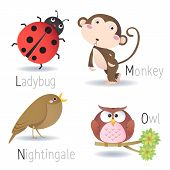 stock photo of nightingale  - Illustration of alphabet with animals from L to O - JPG