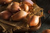 picture of red shallot  - Raw Organic Spicy Shallots on a Background - JPG