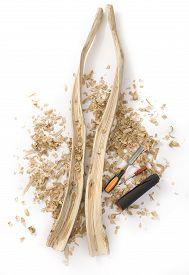 picture of hollow log  - Didgeridoo Making - JPG