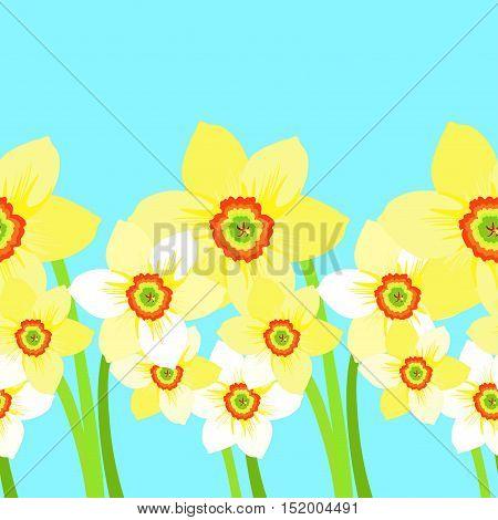 Seamless Strip Daffodils Flower Meadow. Vector Illustration