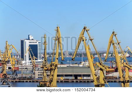 Cranes in Commercial Sea Port of Odessa Ukraine