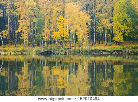 The shore of the lake on a calm misty autumn day. The view from the water. Yellowing forest on the banks
