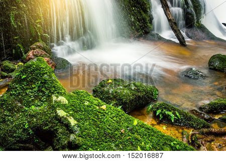 fresh green plant and rock in middle Mun Dang Waterfall rain season in Thailand