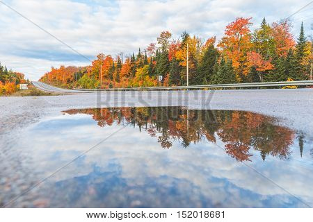 Highway in Canada and trees with autumn colours reflected in a puddle. Maple trees with multi colour leaves. Travel and nature concepts.