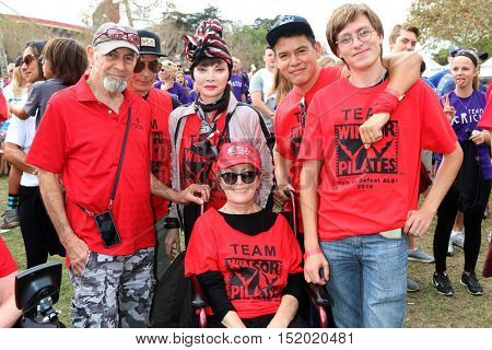 LOS ANGELES - OCT 16:  Mari Winsor (in wheelchair), friends, and Toni Basil in Stripped headscarf at the Los Angeles Walk To Defeat ALS at the Exposition Park on October 16, 2016 in Los Angeles, CA
