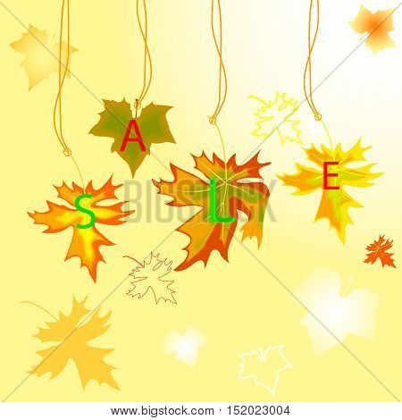 Autumn Maple  Leavse With Sale