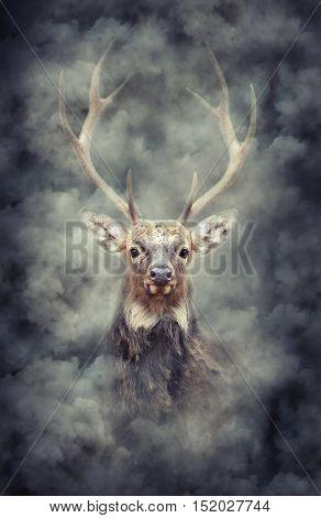 Deer In Smoke