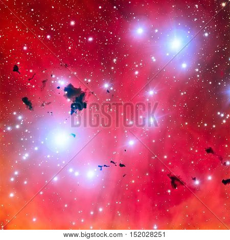 The Running Chicken Nebula, IC 2944, the Lambda Centauri Nebula is an open cluster with an associated emission nebula found in the constellation Centaurus. Elements of this image furnished by NASA.